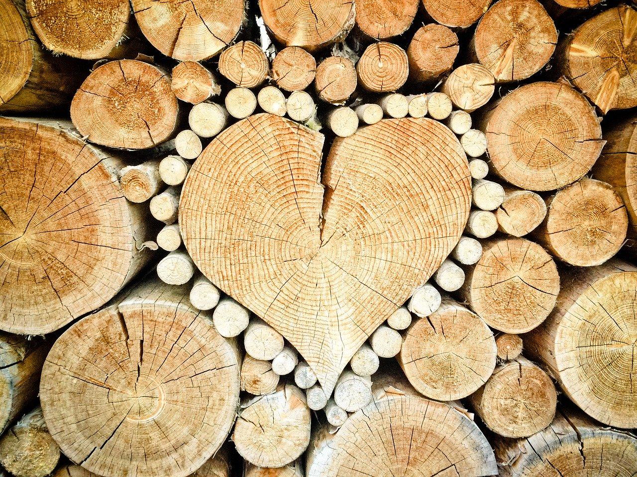 camini a legna o pellet ad aria