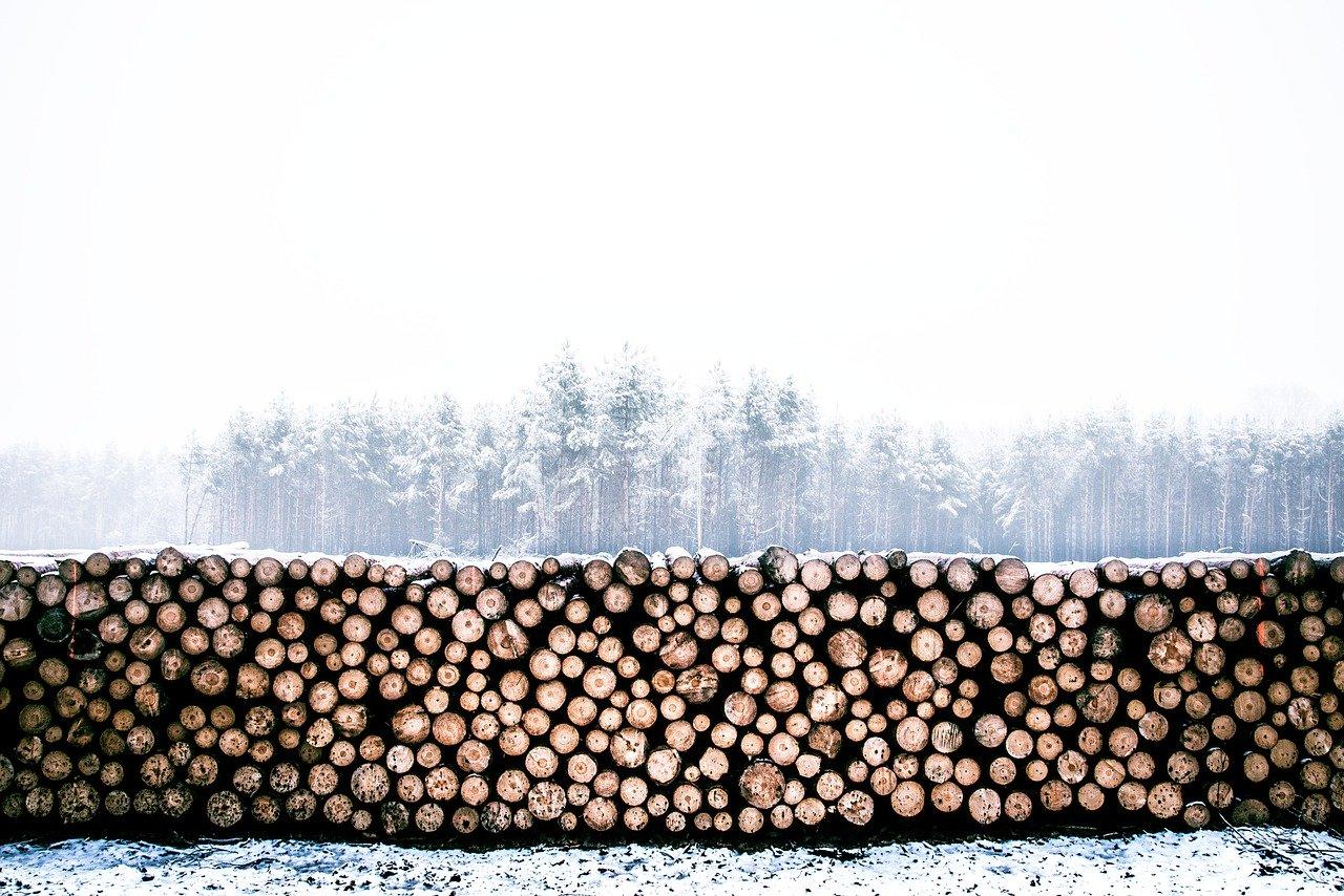 scaldabagno a legna