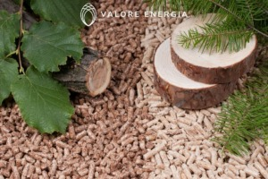 Caldaie a biomassa per abitazione a policombustibile perché convengono?